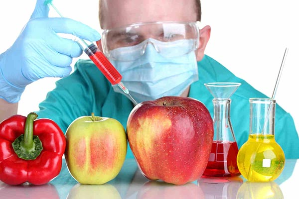 Вредны ли ГМО